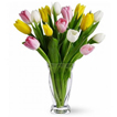 Flowers: 18 Tulips in a Vase (Season to Remember)