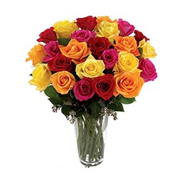 Flowers: 36 Roses Mix in a Vase: Bright Colorful