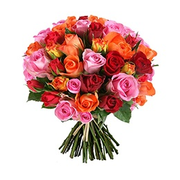 Flowers: 72 Mixed Roses (Ultimate Elegance)